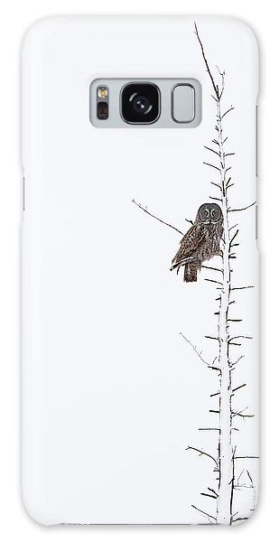 The Grey Hunter On White Galaxy Case by Mircea Costina Photography