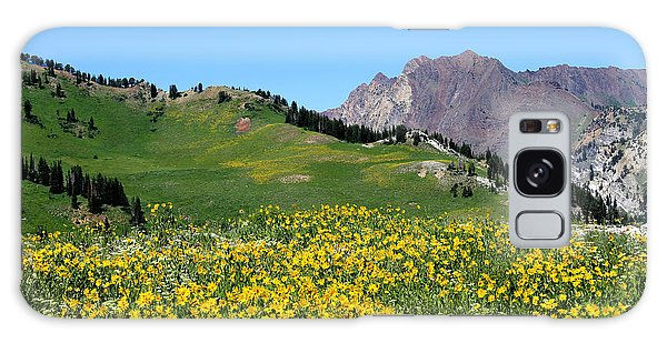 The Hills Are Alive Galaxy Case
