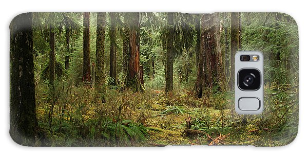 The Hoh Rainforest Galaxy Case by John Bushnell