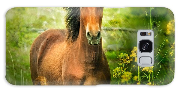 The Horse In The Wildflowers Galaxy Case