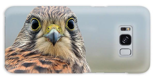 The Kestrel Face To Face Galaxy Case by Torbjorn Swenelius