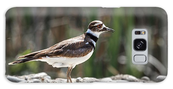 Killdeer Galaxy Case - The Killdeer by Robert Bales