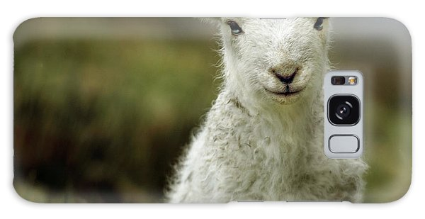 Animal Galaxy S8 Case - The Lamb by Angel Ciesniarska