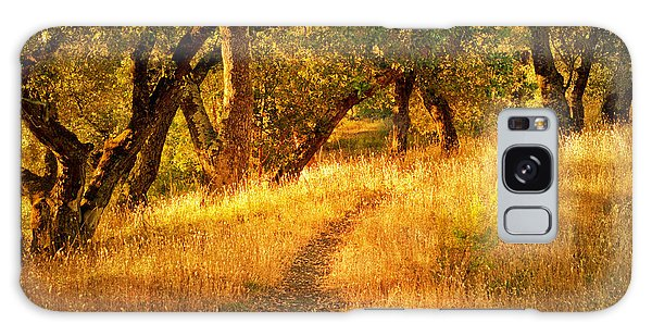 The Late Afternoon Walk Galaxy Case