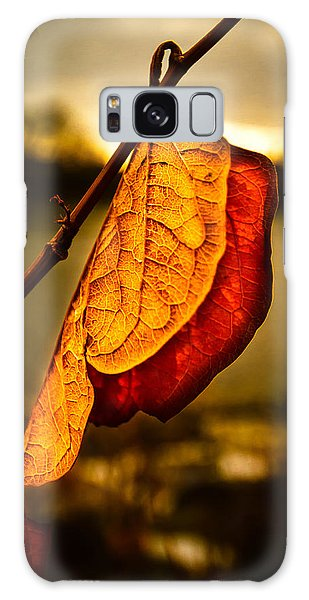 New Leaf Galaxy Case - The Leaf Across The River by Bob Orsillo