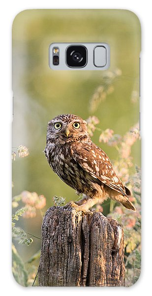 Spring Flowers Galaxy S8 Case - The Little Owl by Roeselien Raimond