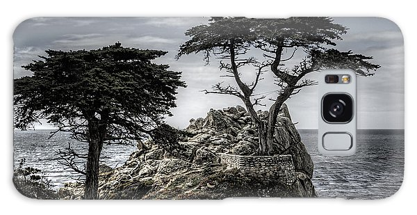 The Lone Cypress Galaxy Case