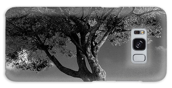 The Lone Tree Black And White Galaxy Case