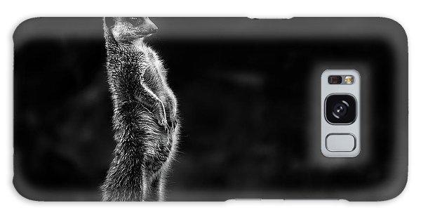 The Meerkat Galaxy Case