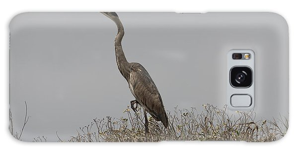 Padre Island National Seashore Galaxy S8 Case - The Mighty Heron by JL Griffis