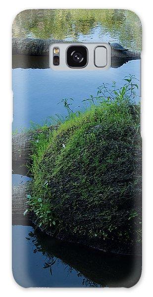 The Myakka River In Myakka River State Park 3 Galaxy Case