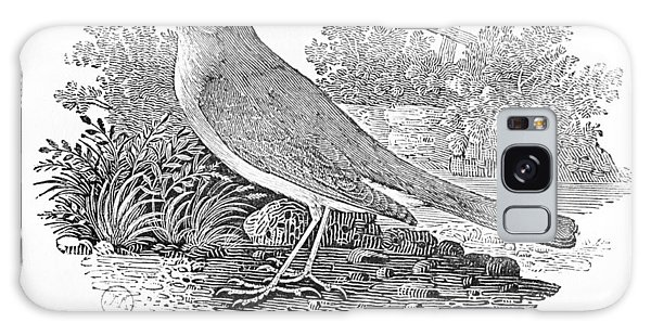 Song Bird Galaxy Case - The Nightingale Luscinia Megarhynchos From The History Of British Birds Volume I, Pub. 1797 Wood by Thomas Bewick