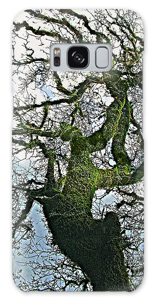 The Old Mossy Oak Tree Against Cloudy Sky Galaxy Case