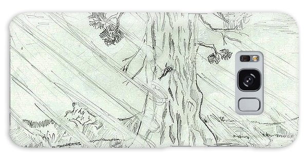 The Old Tree In Spring Light  - Sketch Galaxy Case by Felicia Tica