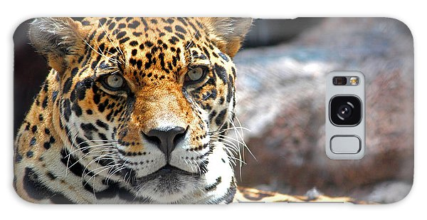 The Ole Leopard Don't Change His Spots Galaxy Case by Lynn Sprowl