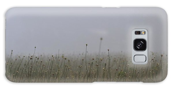 The Onion Field Galaxy Case