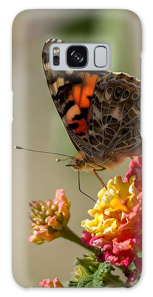 The Painted Lady Galaxy Case