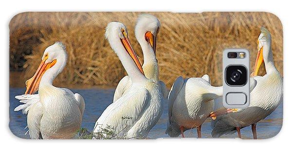 The Pelican Gang Galaxy Case