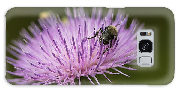 The Pollinator - Bee On Thistle  Galaxy Case by Jane Eleanor Nicholas