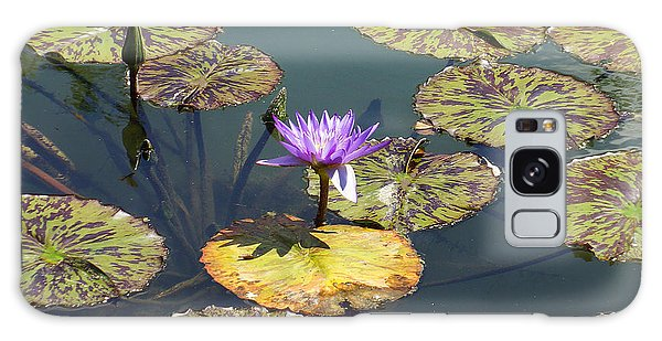The Purple Water Lily With Lily Pads - Two Galaxy Case