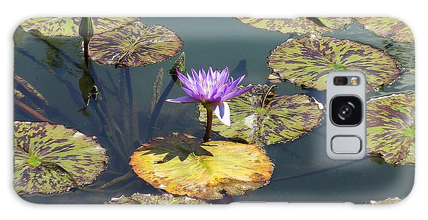 The Purple Water Lily With Lily Pads - Two Galaxy Case by J Jaiam