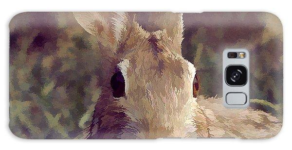 The Rabbit Galaxy Case by John Freidenberg