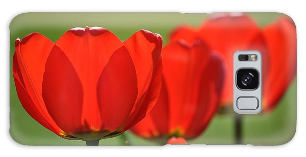 The Red Tulips Galaxy Case