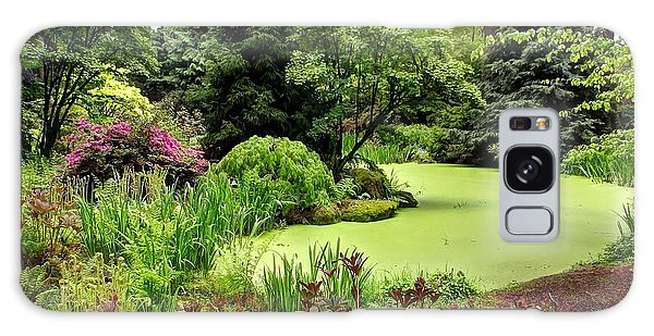 The Rhododendron Species Foundation Fern Pond  Galaxy Case