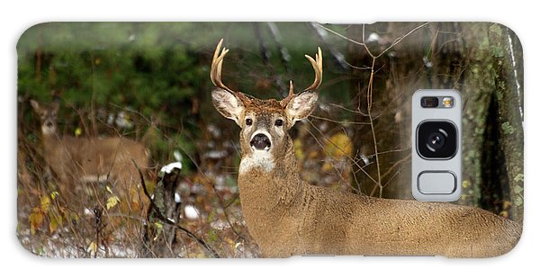 The Rutting Whitetail Buck Galaxy Case by Thomas Young