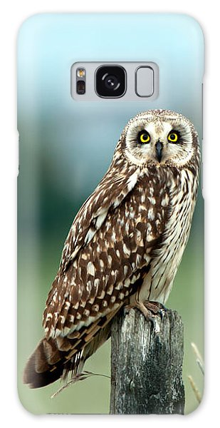 The Short-eared Owl  Galaxy Case