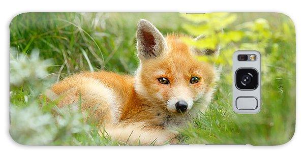 Hiding Galaxy Case - The Shy Kit Fox Cub Hiding Behind Some Ferns by Roeselien Raimond