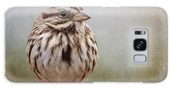 The Song Sparrow Galaxy Case