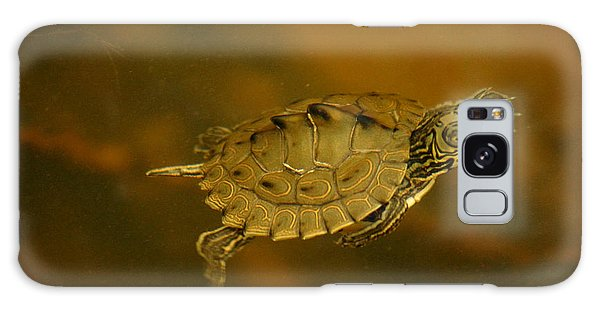 The Southeastern Map Turtle Galaxy Case