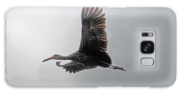 The Stork Galaxy Case