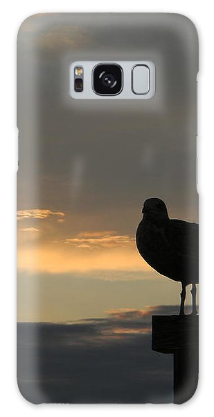 The Sunset Perch Galaxy Case by Jean Goodwin Brooks