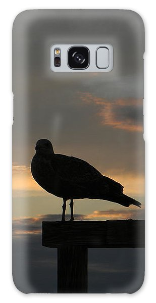 The Sunset Perch Galaxy Case