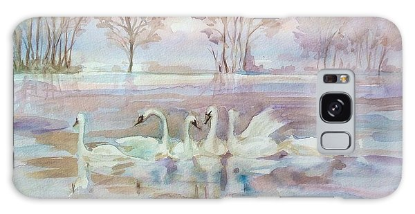 The Swan Lake Galaxy Case
