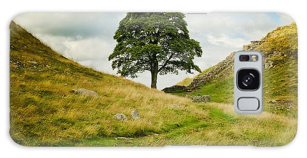 The Sycamore Gap Along Hadrians Wall Galaxy Case by MaryJane Armstrong