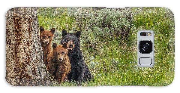 The Three Bears  Galaxy Case