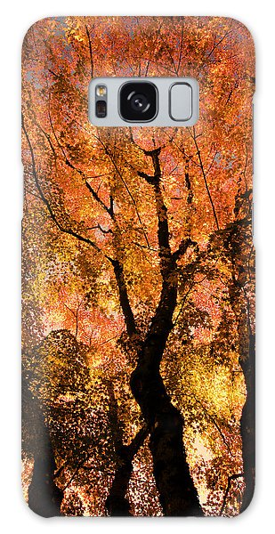 The Trees Dance As The Sun Smiles Galaxy Case