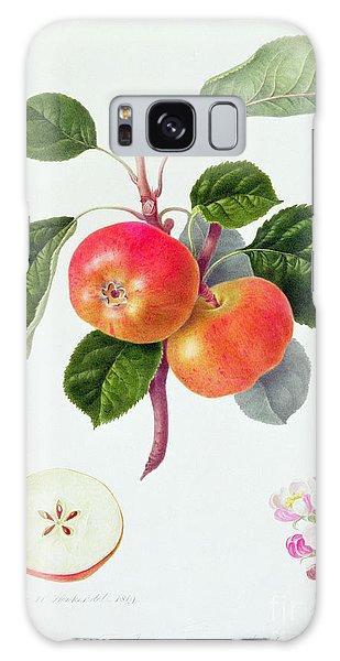 Botanical Garden Galaxy Case - The Trumpington Apple by William Hooker