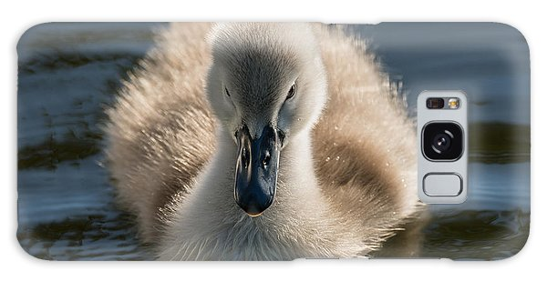 The Ugly Duckling Galaxy Case by Michael Mogensen