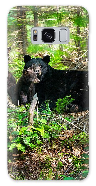 The Ultimate Single Mother Black Bear Sow And Cubs Galaxy Case