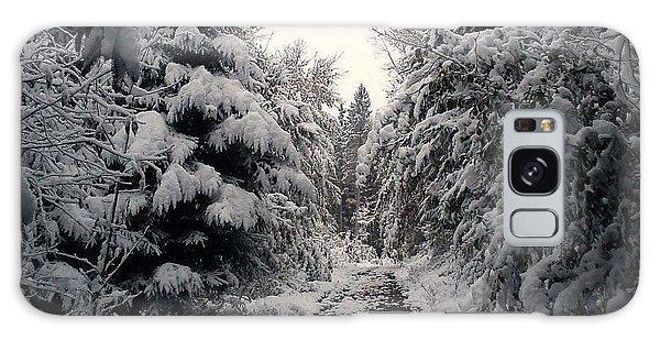 The Way In Snow Galaxy Case by Felicia Tica