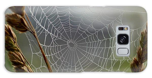 The Web Galaxy Case by Kerri Farley