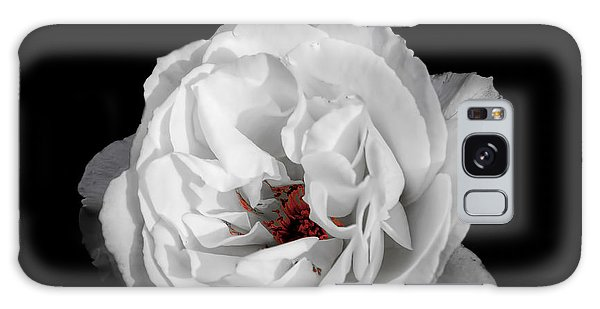 The White Rose Galaxy Case
