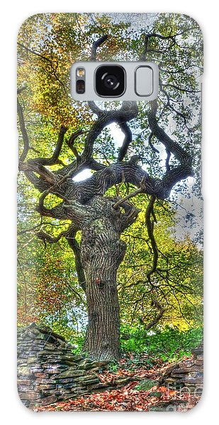 The Witches Tree Galaxy Case