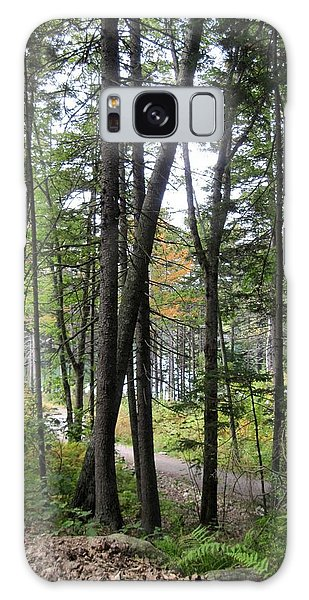 The Woodland Coastal Maine Galaxy Case