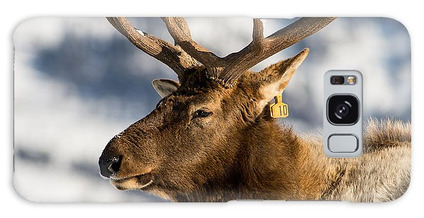 The Yellowstone Elk # 10 Galaxy Case