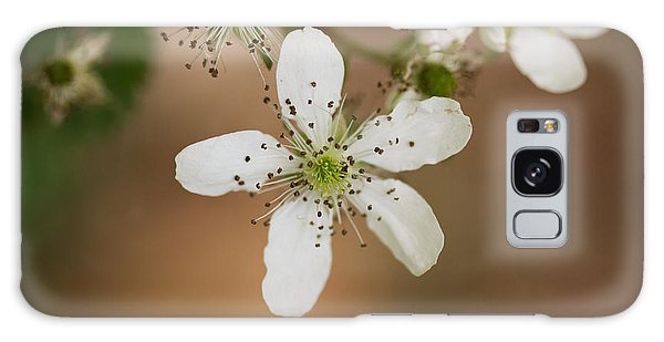 Thimbleweed Galaxy Case